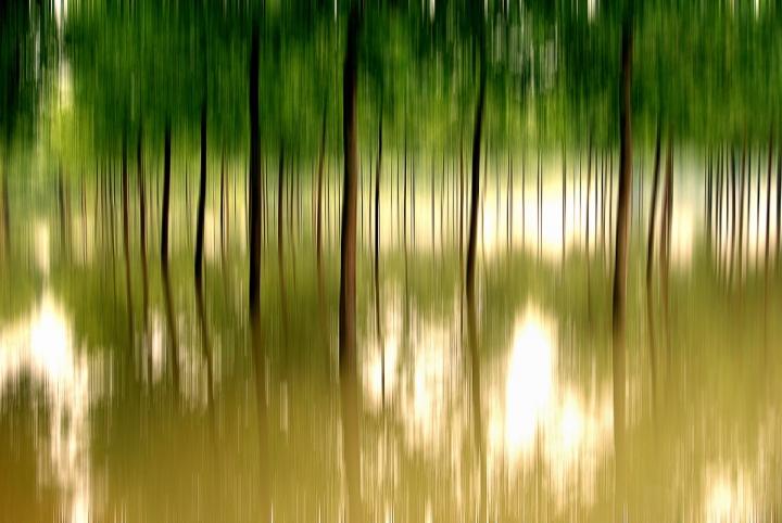 Sentieri d'acqua di ansanet