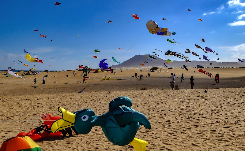 Fuerteventura, the paradise of kites di kaos