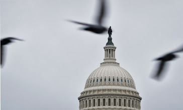 Photo: Birds fly infront of the US Capitol as the partial government shutdown approaches the two-week mark on October 13, 2013 in Washington, DC. AFP PHOTO/Mandel NGAN        (Photo credit should read MANDEL NGAN/AFP/Getty Images)