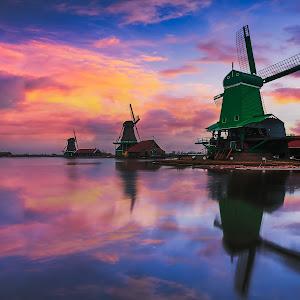 Zaanse Schans Windmills-x.jpg