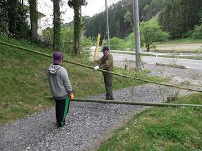 Photo: 2本目切り出し。 この2本がゴールラインに立っていた竹。