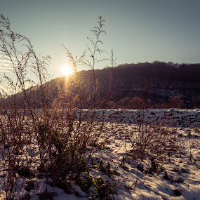 .. by Lubomir Gobs - Landscapes Forests ( d90, snow, 12-24mm, forest, nikon, slovakia )