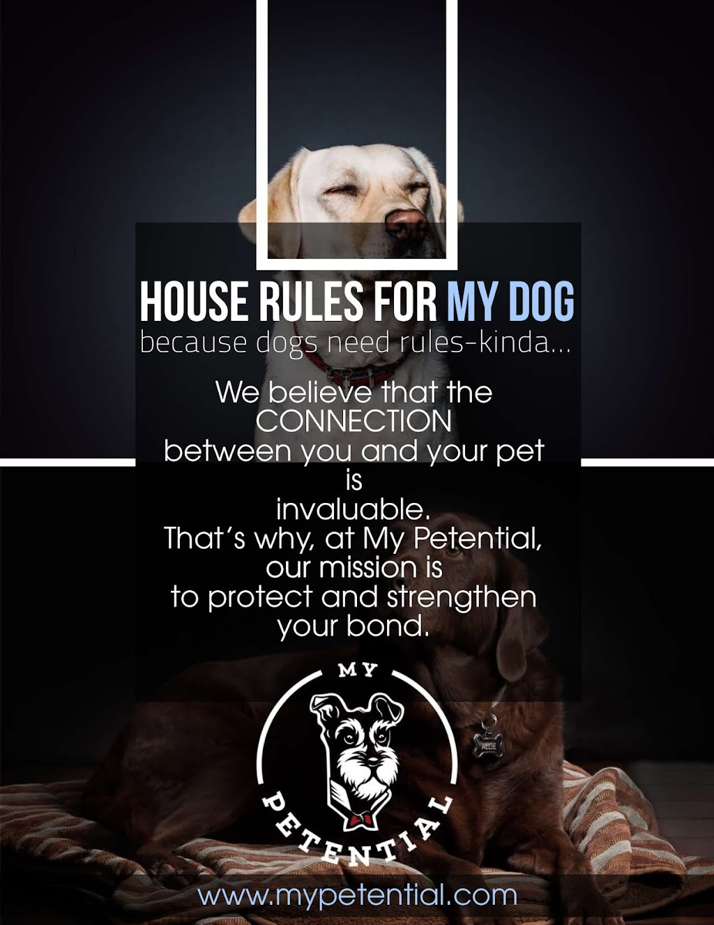 House Rules for My Dog E-book
