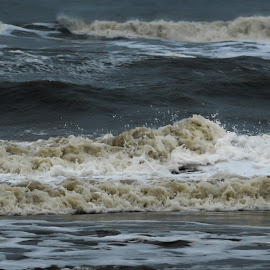 the west coast  by Rasmus Thomsen - Nature Up Close Water ( water, waves, sea, denmark, west )