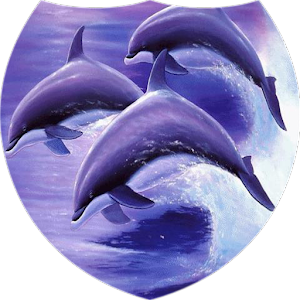 Dolphins live wallpaper download