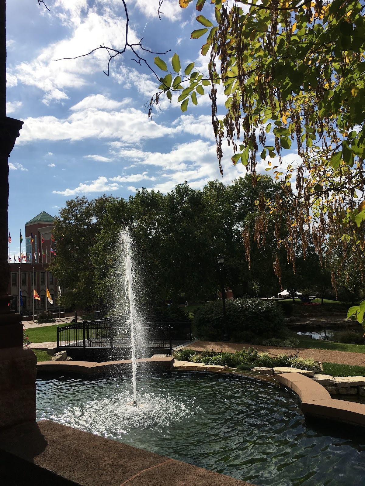 The 5 Best Fountains on SLU s Campus