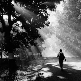 the walker by Aep Saepudiah - Landscapes Weather ( blackandwhite, streetphotography, b&w, street, bw, pwcsunbeams-dq, rayoflight, morning, bnw )