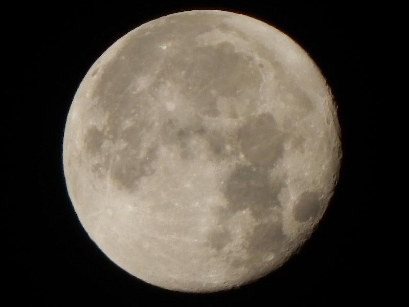 Moon light  di marco_di_nardi