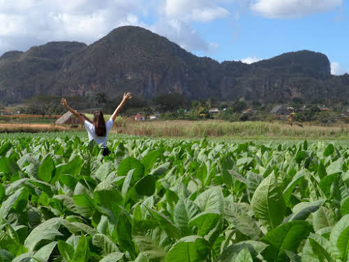 Travel Horror Stories When Travel Goes Wrong // Cuba Vinales Photo Why Not Ju