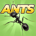 Pocket Ants: Colony Simulator icon