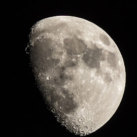 WAXING GIBBOUS by Jennifer  Loper  - Landscapes Starscapes ( moon, surface details, energizer rabbit, man in the moon, ridges, gibbous, craters, waxing )