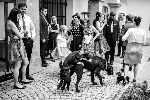 Wedding photographer Petr Wagenknecht (wagenknecht). Photo of 01.07.2015
