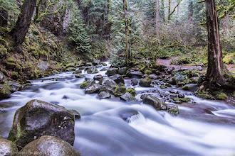 Photo: Mt Hood National Forest, Oregon