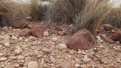 Photo: Geologia: