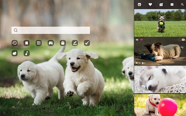 My Puppies Adorable Puppy Dog Wallpapers