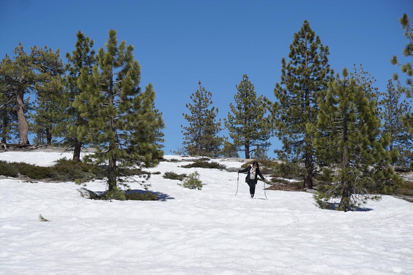 Yosemite Snow play