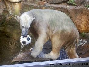 Photo: Und weiter geht das Ballspiel :-)