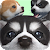 Cute Pocket Puppy 3D - Part 2 file APK Free for PC, smart TV Download