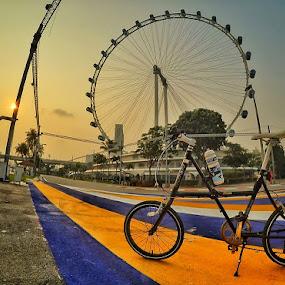 The bike & Ferris Wheel  by Barry Allan - City,  Street & Park  Street Scenes