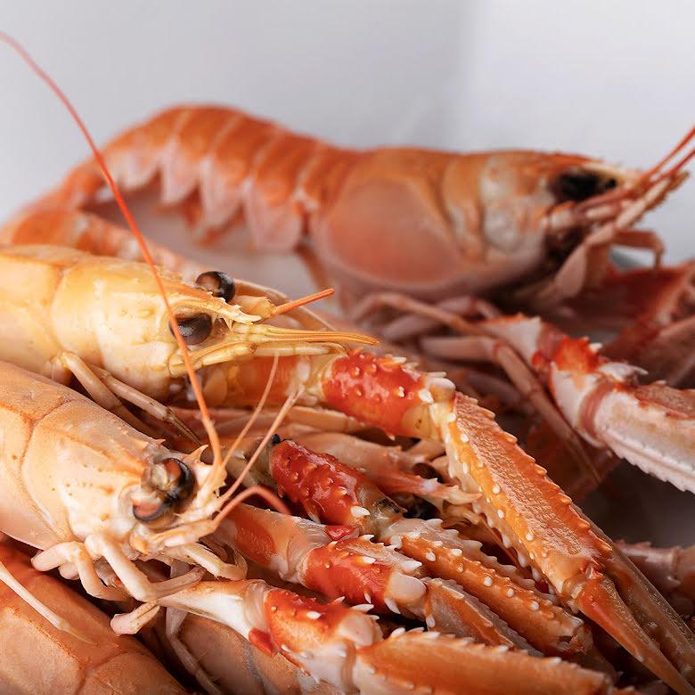 Färska kokta havskräftor
