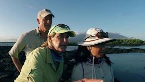 Going Galapagos thumbnail