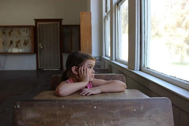 """Entrevista sobre """"La escuela sin funciones"""""""