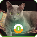 Russian Blue Wall & Lock icon