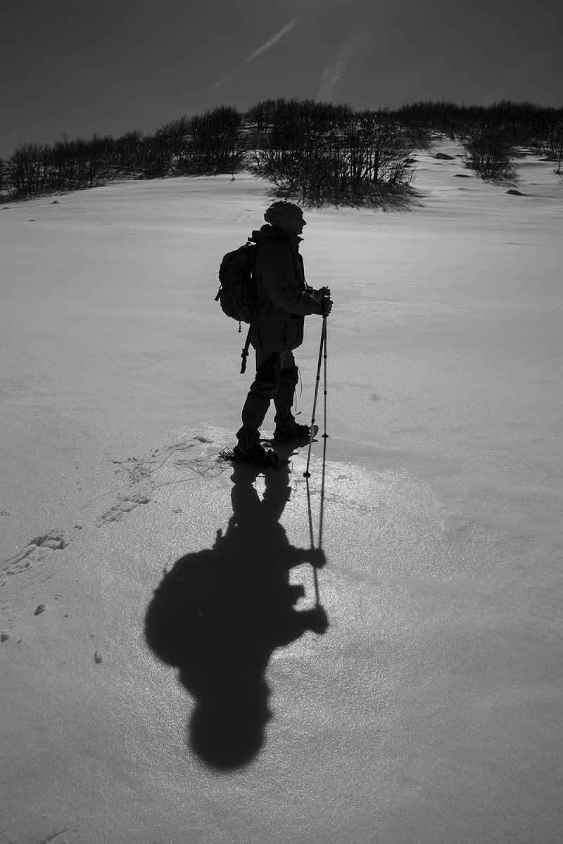 Il silenzio della neve di LucaMonego