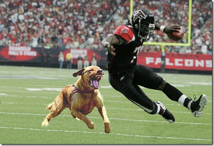 Very wrong, but I stole this from a blog: http://fisherwy.blogspot.com/2007/12/michael-vick-sentencing.html