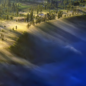 Foggy Morning in Bromo by Hendri Suhandi - Landscapes Mountains & Hills ( hill, mountain, fog, forest, sunrise, bromo, sun rays )