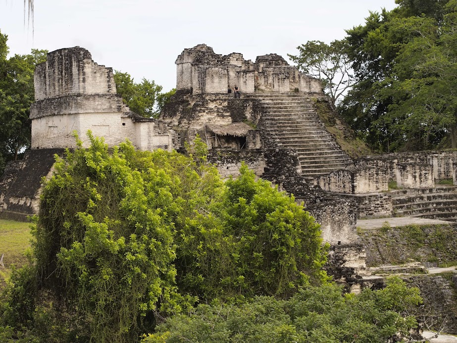 Unless you're on a Tikal sunrise tour, you don't need a guide.