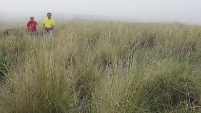 Photo: Ichu y compañeros exploradores Arbolitos - Alto Selva Alegre 04-Marzo-2013
