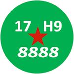 Viet Nam License Plate