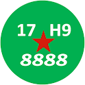 Viet Nam License Plate icon