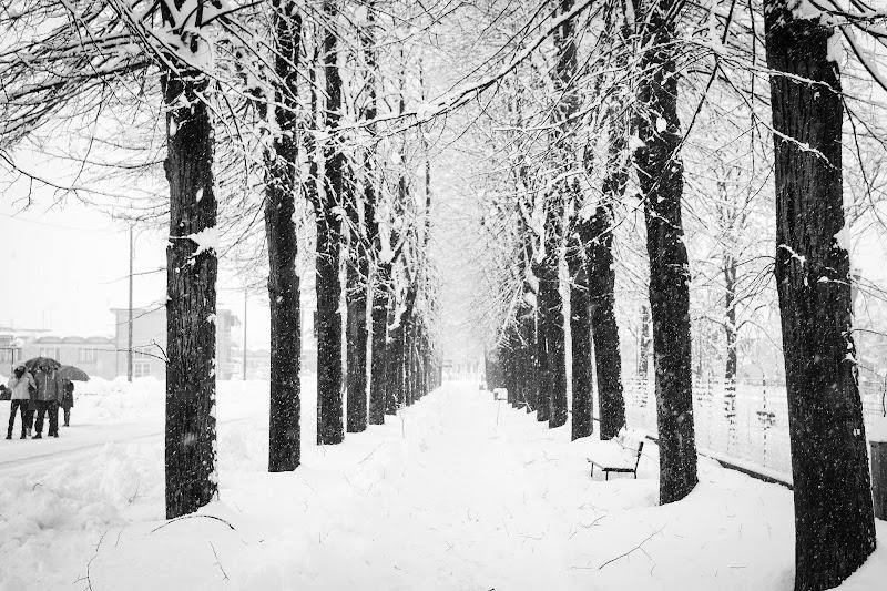 Passeggiare nella neve di utente cancellato