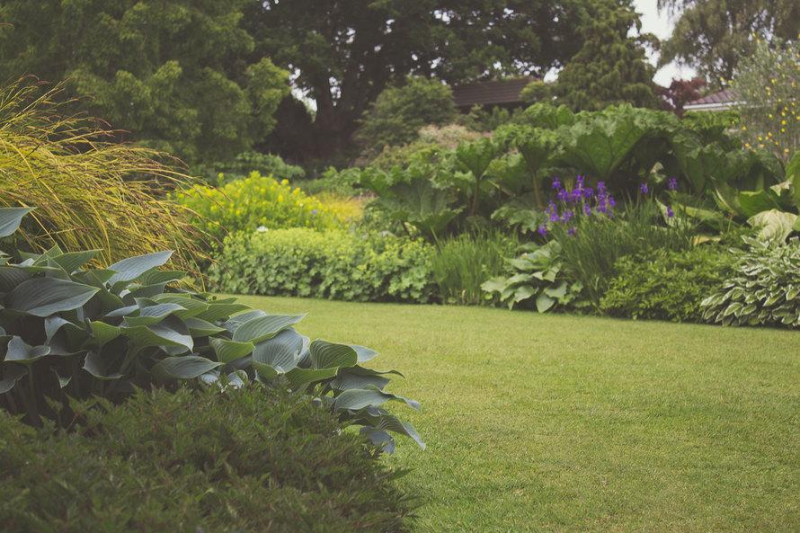 garden-large.jpg