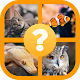 Animals Quiz - Guess Animals Fish Birds Snakes for PC-Windows 7,8,10 and Mac