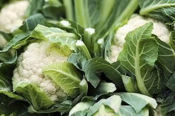 Parmesan-Garlic Mashed Cauliflower