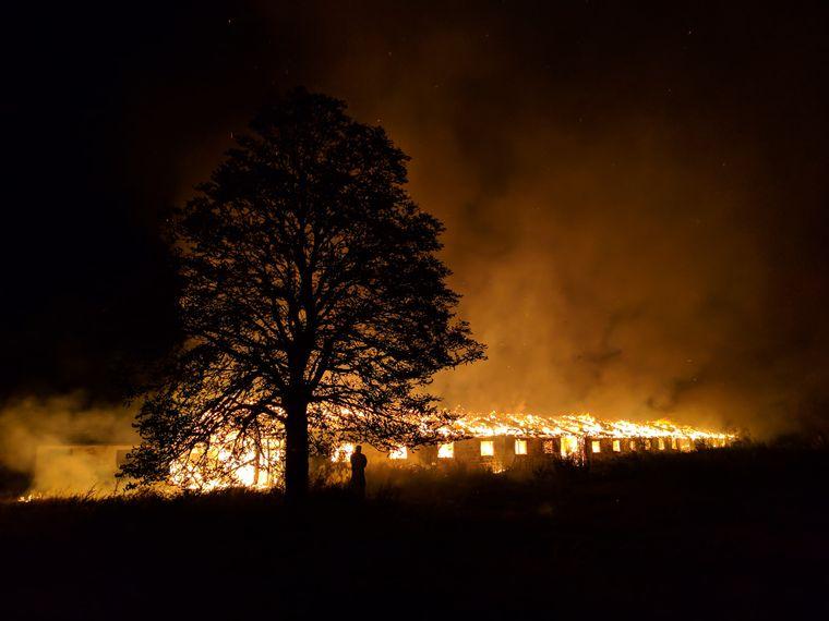 Пожар на ферме ООО «Княжицкий», 2018 год