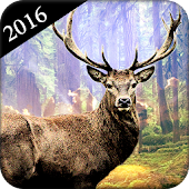 Deer Hunter : Deer Hunting