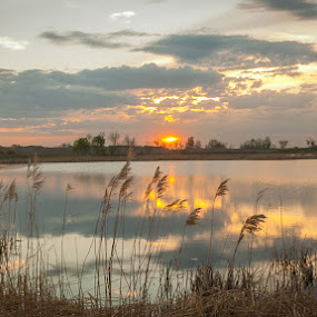 Spring Sunset by Garnie Ross - Landscapes Sunsets & Sunrises ( water, sunset, prairie, country )