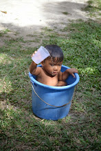 Photo: Baby in a Bucket (Angel & Marie's Maria(