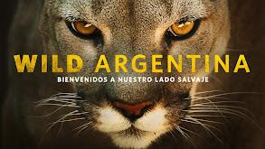 Wild Argentina thumbnail