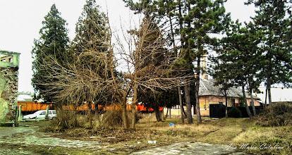 Photo: 2009.02.01