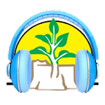 NAMCOL Campus Radio Icon