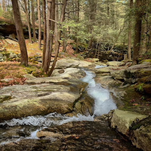 Top of Wheelbarrow Run, 2015.04.25 by Aaron Campbell - Instagram & Mobile iPhone ( luzerne county, hdr, vividhdr, iphone 6 plus, outdoors, the tubs, pennsylvania, nepa, fotor, seven tubs natural area, snapseed, hikepa )