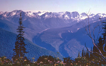 Photo: 58. View of Suiattle River VaIley, arcing off to headwaters on Glacier Peak (off the picture to the right) from Miner's Ridge. This picture is taken from the approximate site of the proposed Kennecott open pit copper mine.