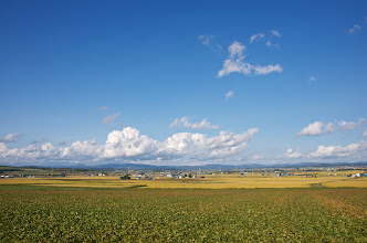Photo: 北竜町の彩どり・9月の3