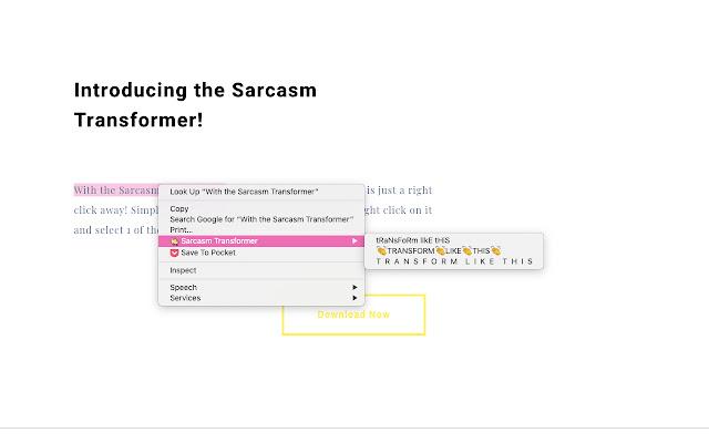 Sarcasm Transformer