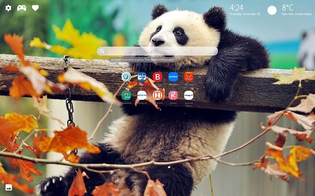 Cute Panda Bear Wallpaper HD New Tab